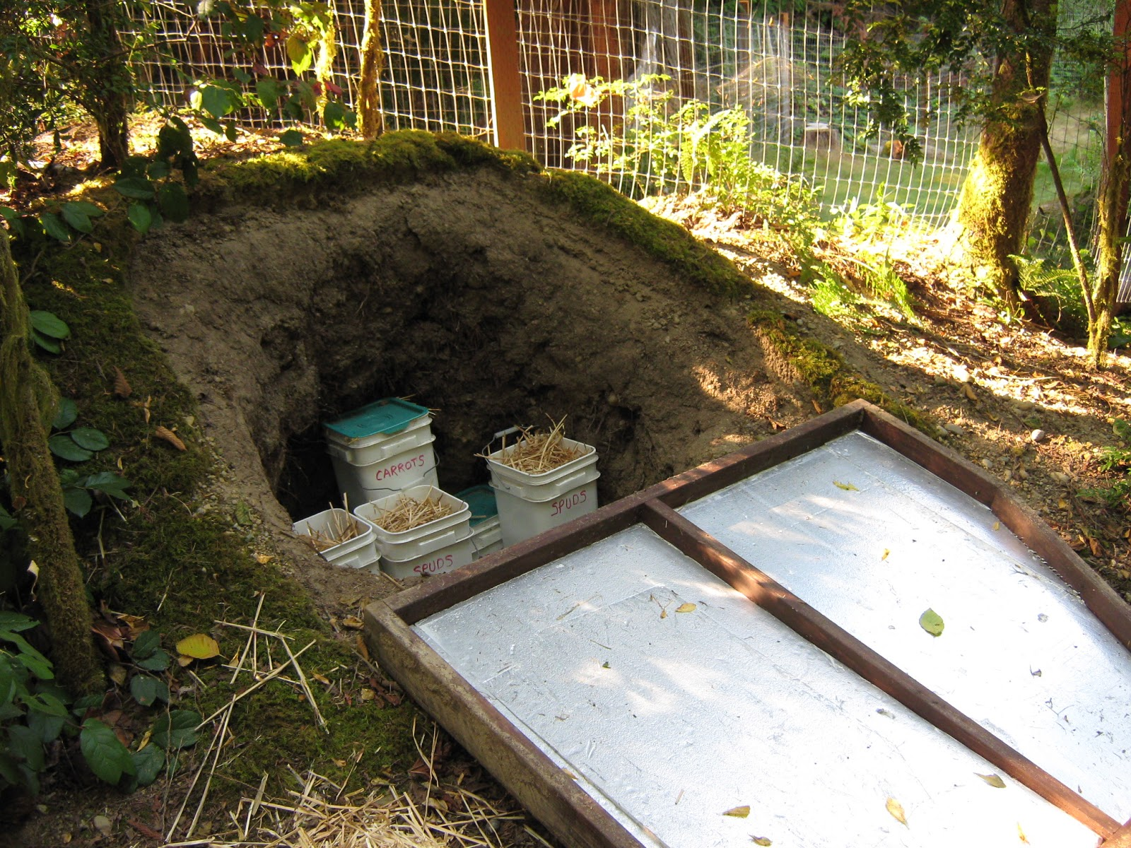 Building A Root Cellar Tips And Collection Of Photos