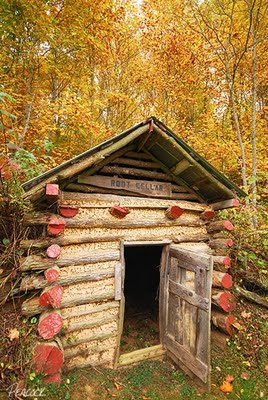 Building A Root Cellar Tips And A Collection Of Photos